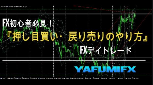 f:id:yafumifx:20210110204333j:plain