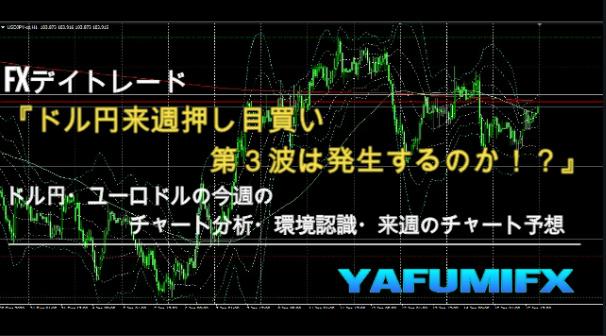 f:id:yafumifx:20210116233907j:plain