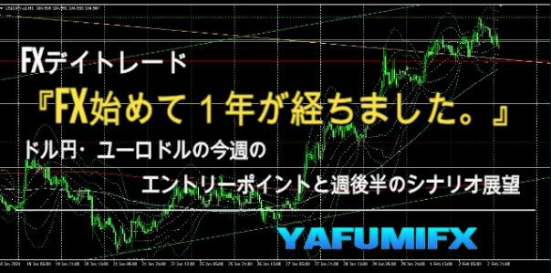 f:id:yafumifx:20210203131405j:plain