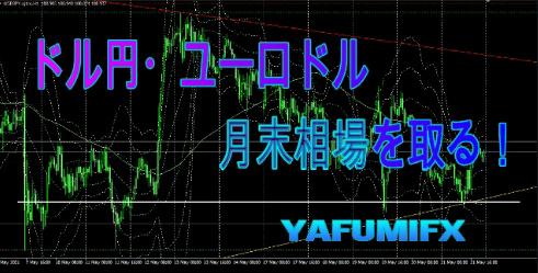 f:id:yafumifx:20210522234859j:plain