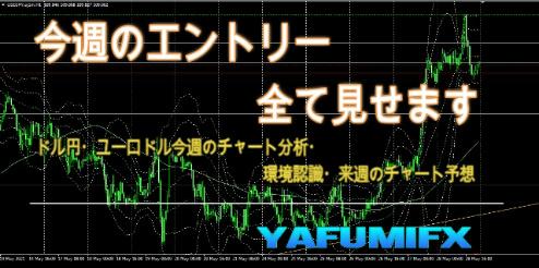 f:id:yafumifx:20210530000855j:plain