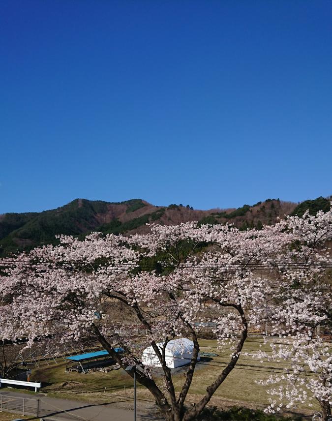 f:id:yagami-yukke:20200411145615p:plain