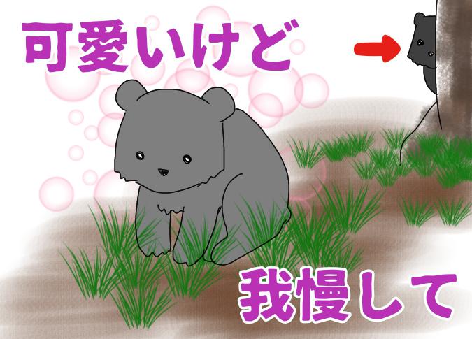 f:id:yagami-yukke:20200426170134p:plain