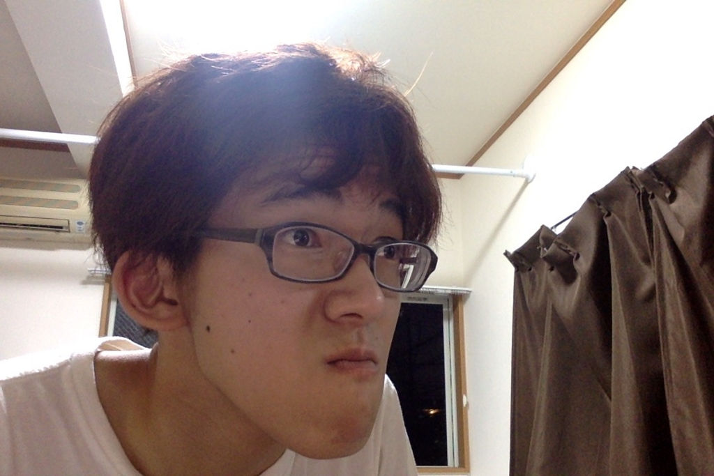 f:id:yagi-renta:20160524191842j:plain