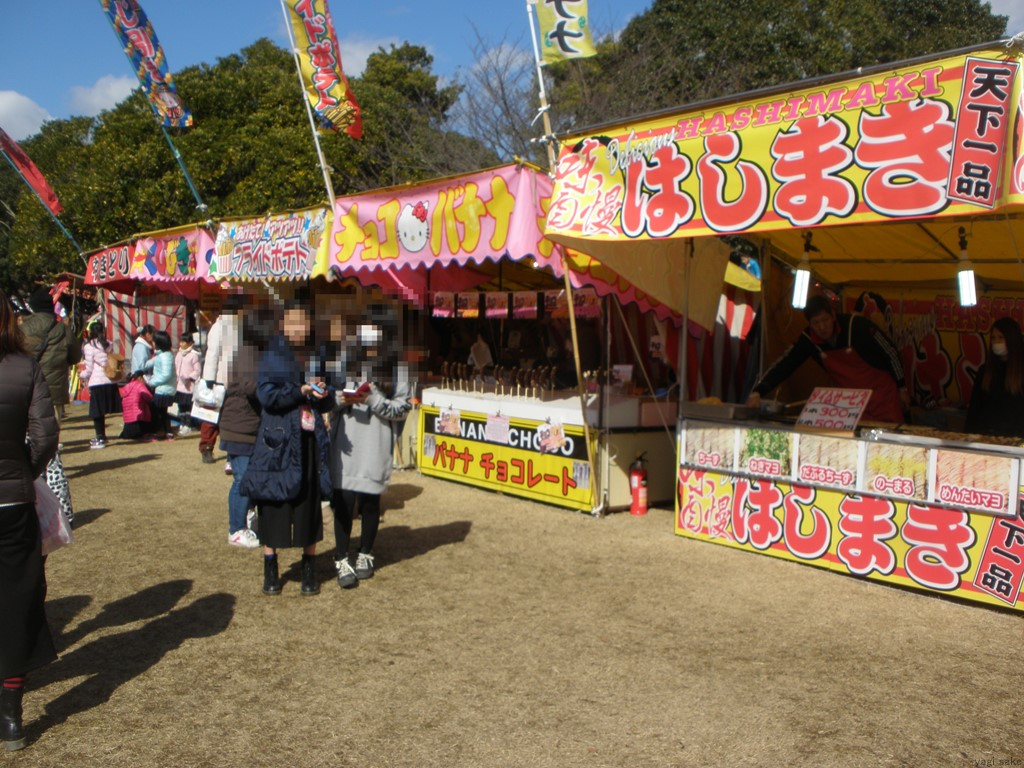 f:id:yagi_sake:20170219212720j:plain