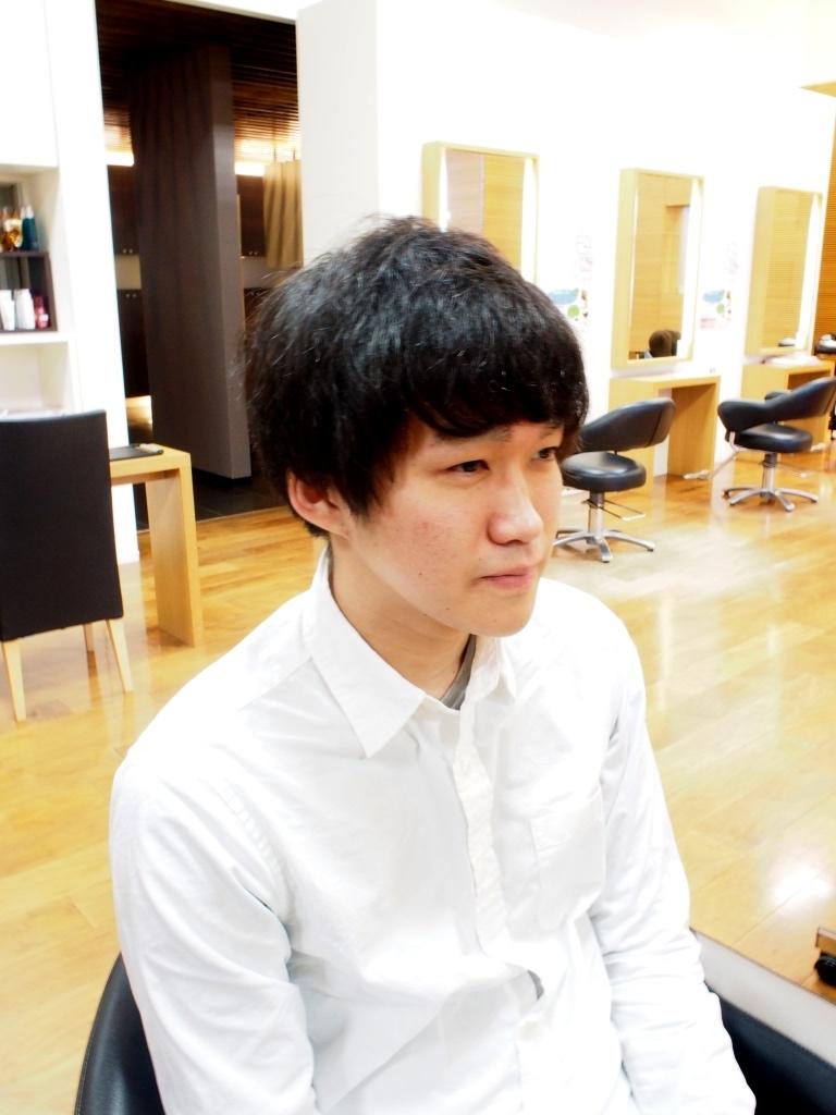 f:id:yagikatsuji:20160413144331j:plain