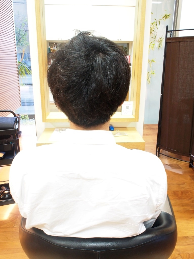 f:id:yagikatsuji:20160413144453j:plain
