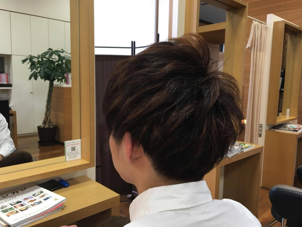 f:id:yagikatsuji:20160413145054j:plain