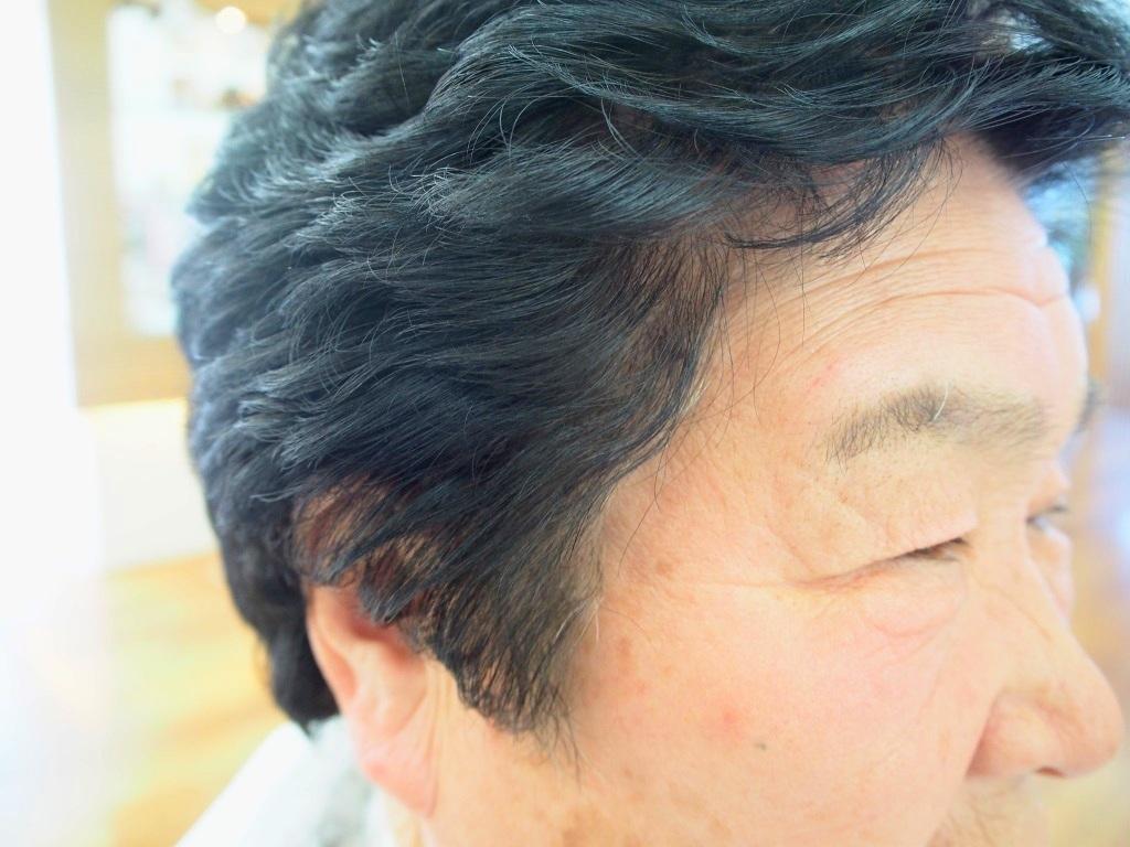 f:id:yagikatsuji:20160413174404j:plain