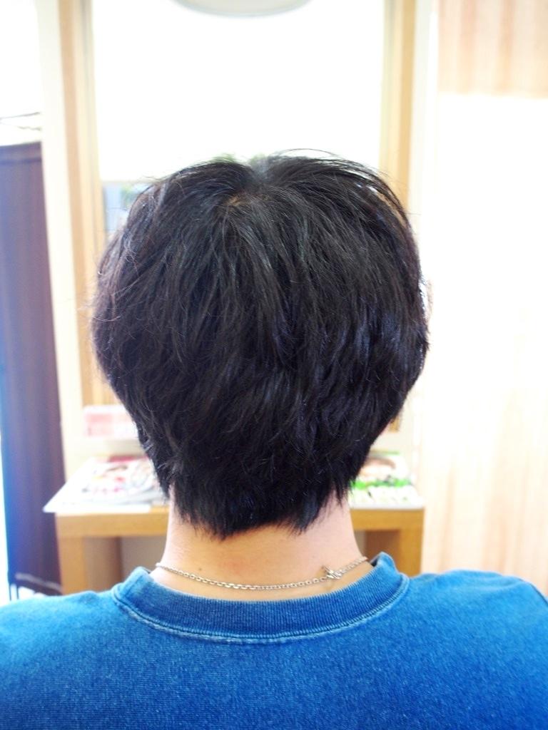 f:id:yagikatsuji:20160902111611j:plain