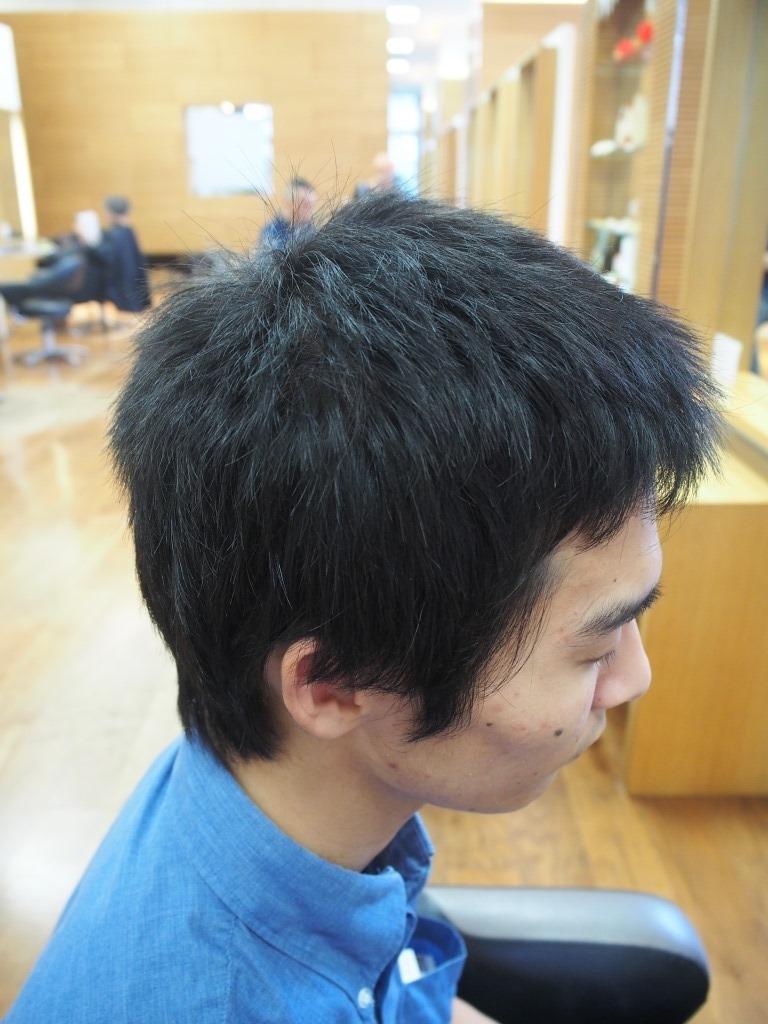 f:id:yagikatsuji:20160930170039j:plain