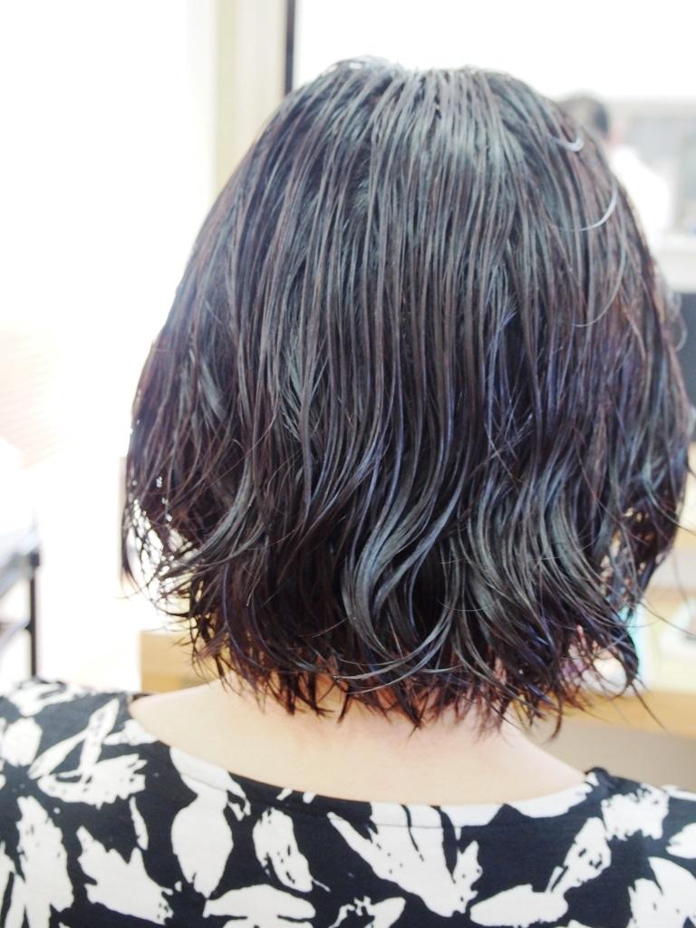 f:id:yagikatsuji:20161008115436j:plain