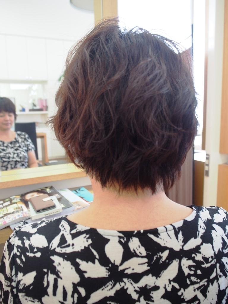 f:id:yagikatsuji:20161008123724j:plain
