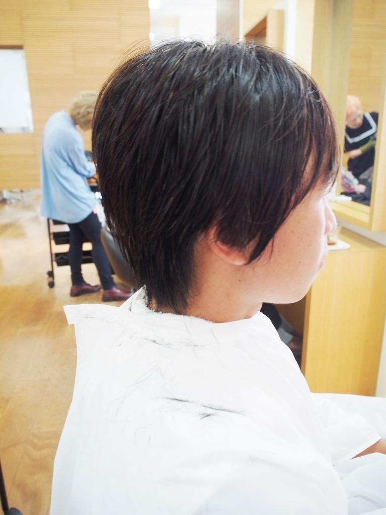 f:id:yagikatsuji:20161008190557j:plain