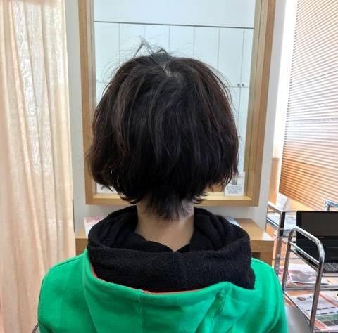 f:id:yagikatsuji:20170309152418j:plain