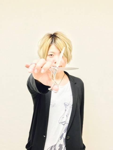 f:id:yagikatsuji:20170310110333j:plain