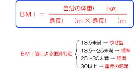 f:id:yagikatsuji:20170405160046j:plain