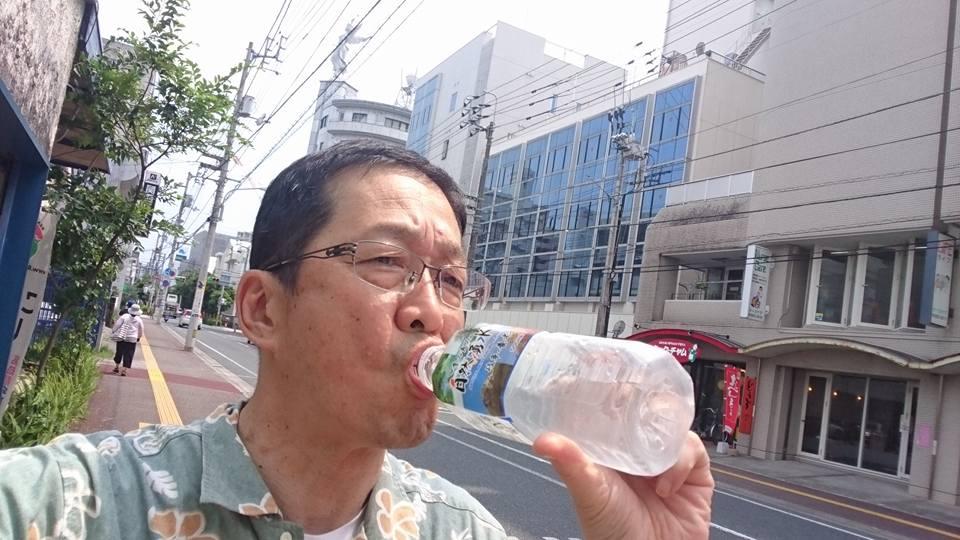 f:id:yagikatsuji:20170705132112j:plain