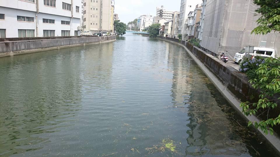 f:id:yagikatsuji:20170705132424j:plain
