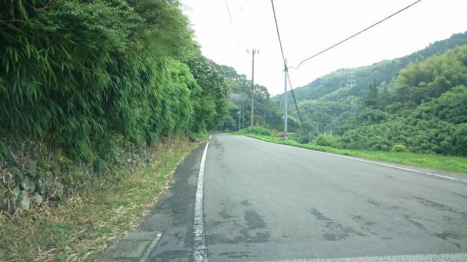 f:id:yagikatsuji:20170712152335j:plain