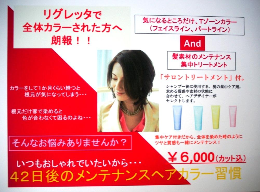 f:id:yagikatsuji:20170713110613j:plain