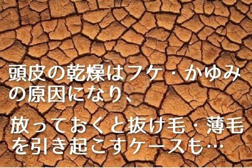 f:id:yagikatsuji:20170721164823j:plain