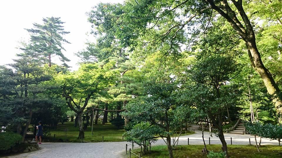 f:id:yagikatsuji:20170921111441j:plain