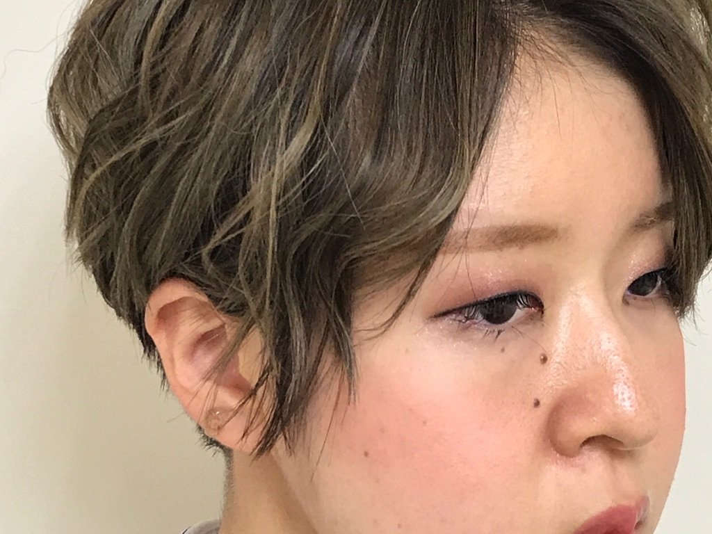 f:id:yagikatsuji:20171010122421j:plain