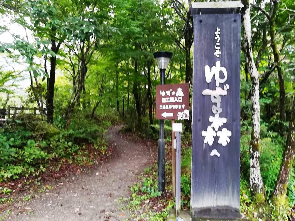 f:id:yagikatsuji:20171024161433j:plain