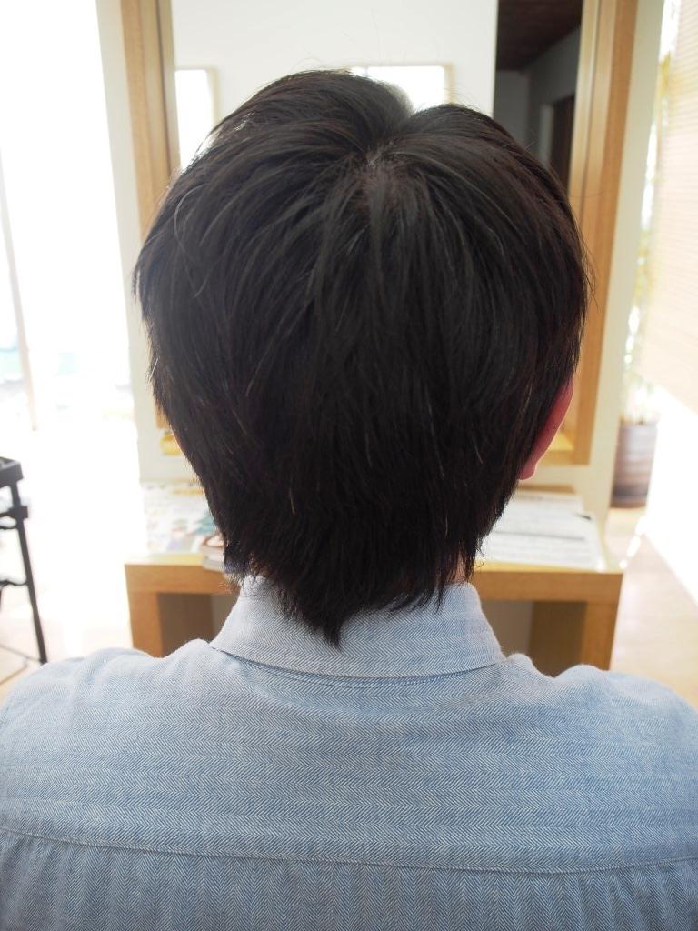 f:id:yagikatsuji:20171129183353j:plain