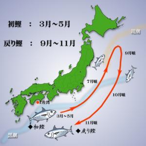 f:id:yagikatsuji:20180207163702p:plain