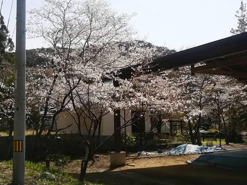 f:id:yagikatsuji:20180418171511j:plain