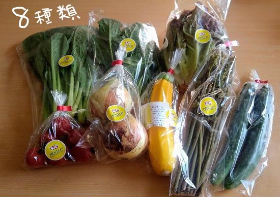 食べチョクでお取り寄せした金沢野菜