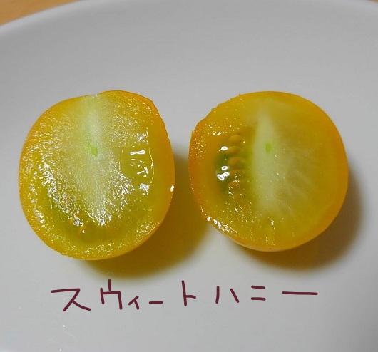 ミニトマト スイートハニー