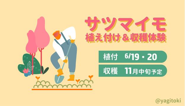 f:id:yagitokidokiyasai:20210601014118j:plain