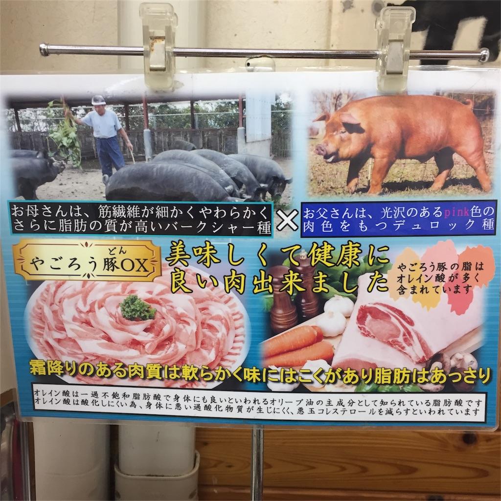 f:id:yagorou-pork:20161116190645j:image