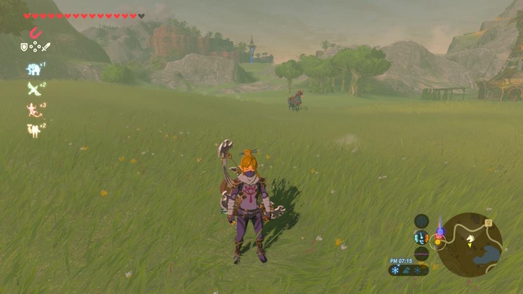 遠くにいる馬が…