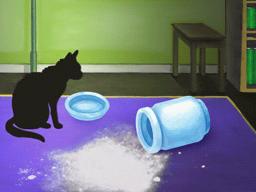 骨壺をひっくり返した猫