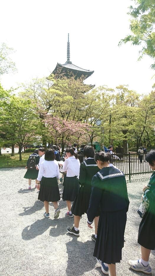 f:id:yahiko00:20170424091812j:plain