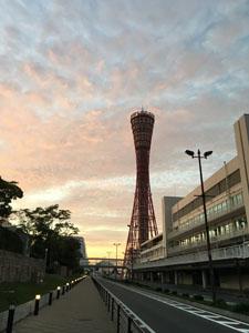 f:id:yahori_tsukasa:20170510090917j:plain