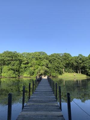 水辺がきれいな公園
