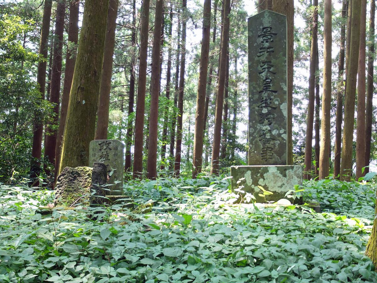 f:id:yakatohiko:20200401111311j:plain