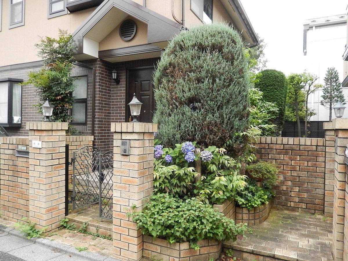 f:id:yakichimususu:20200626193754j:plain