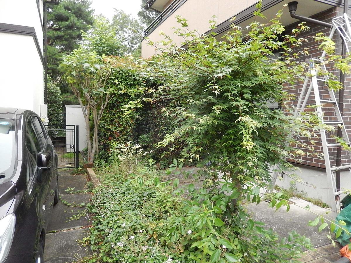 f:id:yakichimususu:20200626194048j:plain