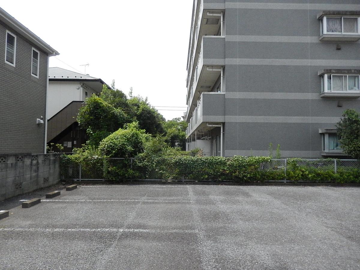 f:id:yakichimususu:20200808205952j:plain