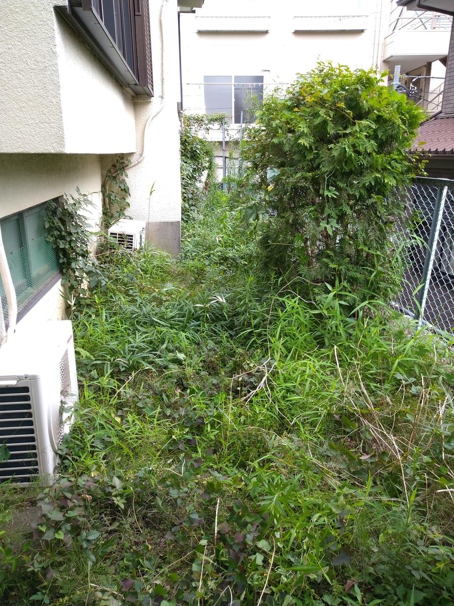 f:id:yakichimususu:20200809212609j:plain