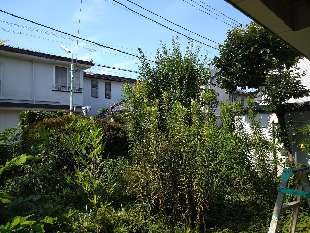 f:id:yakichimususu:20200814194409j:plain