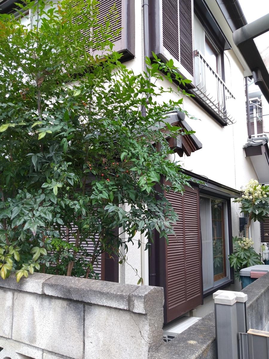 f:id:yakichimususu:20201129174055j:plain