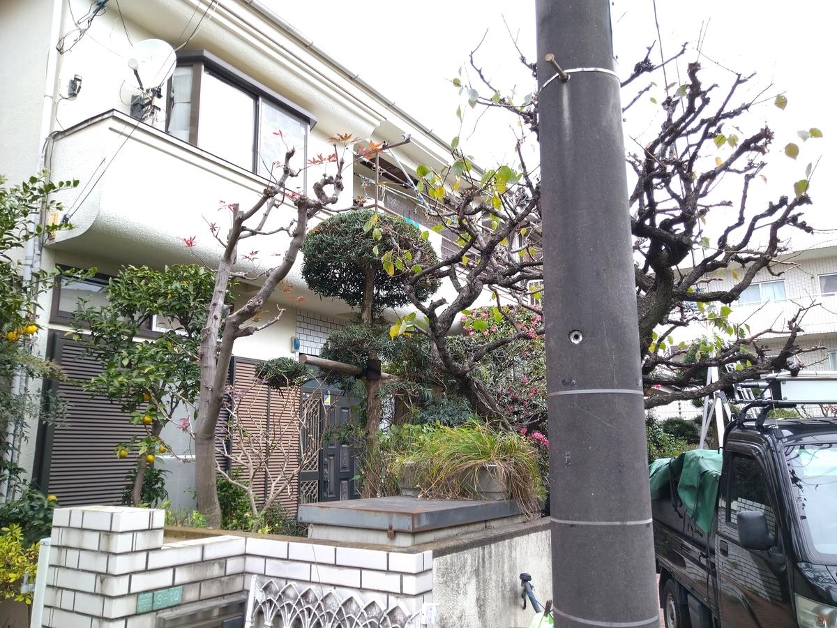 f:id:yakichimususu:20201202164334j:plain