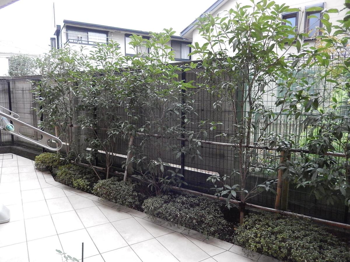f:id:yakichimususu:20201203200431j:plain